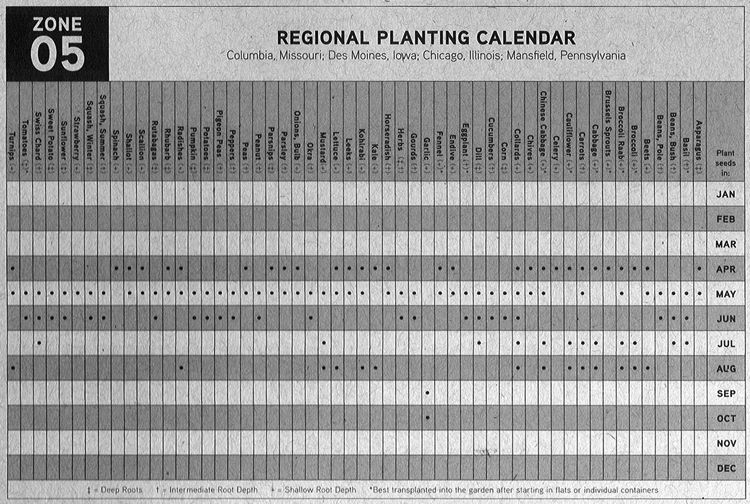 Zone 5 Planting Calendar   Google Search