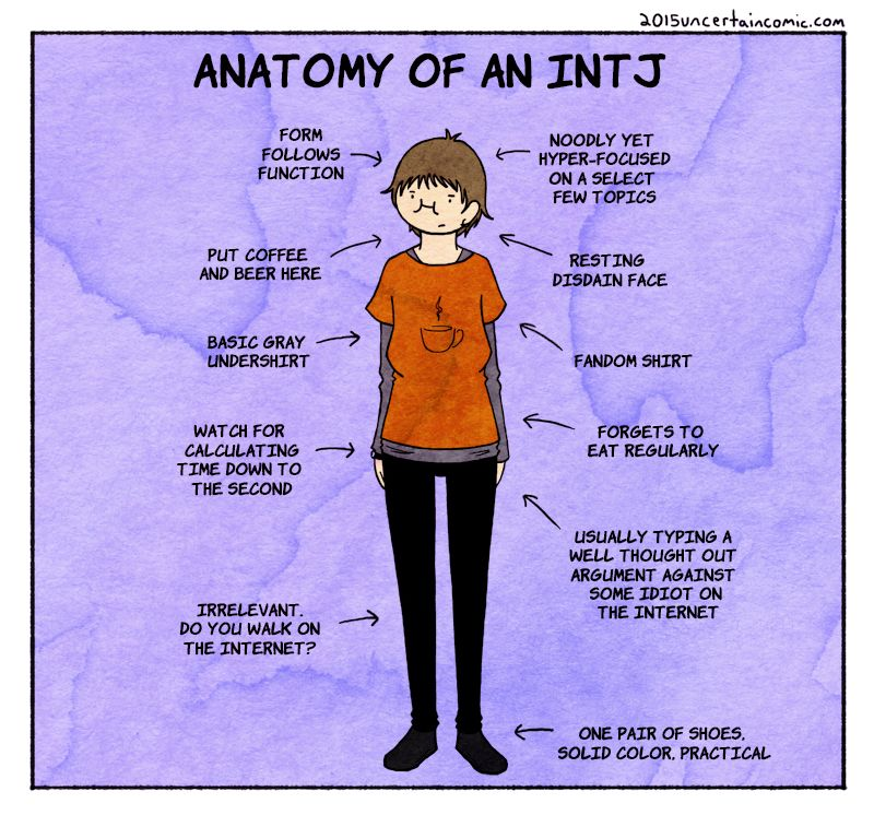 Introvert Cat -