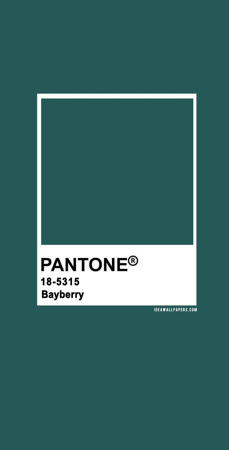 Pantone Bayberry : Pantone 18-5315 Bayberry, pantone bayberry , pantone green #color #pantone pantone 2020, pantone color, pantone color 2020, pantone clothing, pantone palette, pantone paintpantone color of the year, pantone color of the year 2020, pantone colour of the year 2020 #pantone2020 Pantone Bayberry : Pantone 18-5315 Bayberry, pantone bayberry , pantone green #color #pantone pantone 2020, pantone color, pantone color 2020, pantone clothing, pantone palette, pantone paintpantone color
