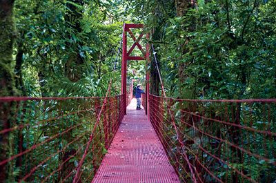 Costa Rica Vacations, Vacation Packages, Costa Rica Tours, Travel - www.gate1travel.com