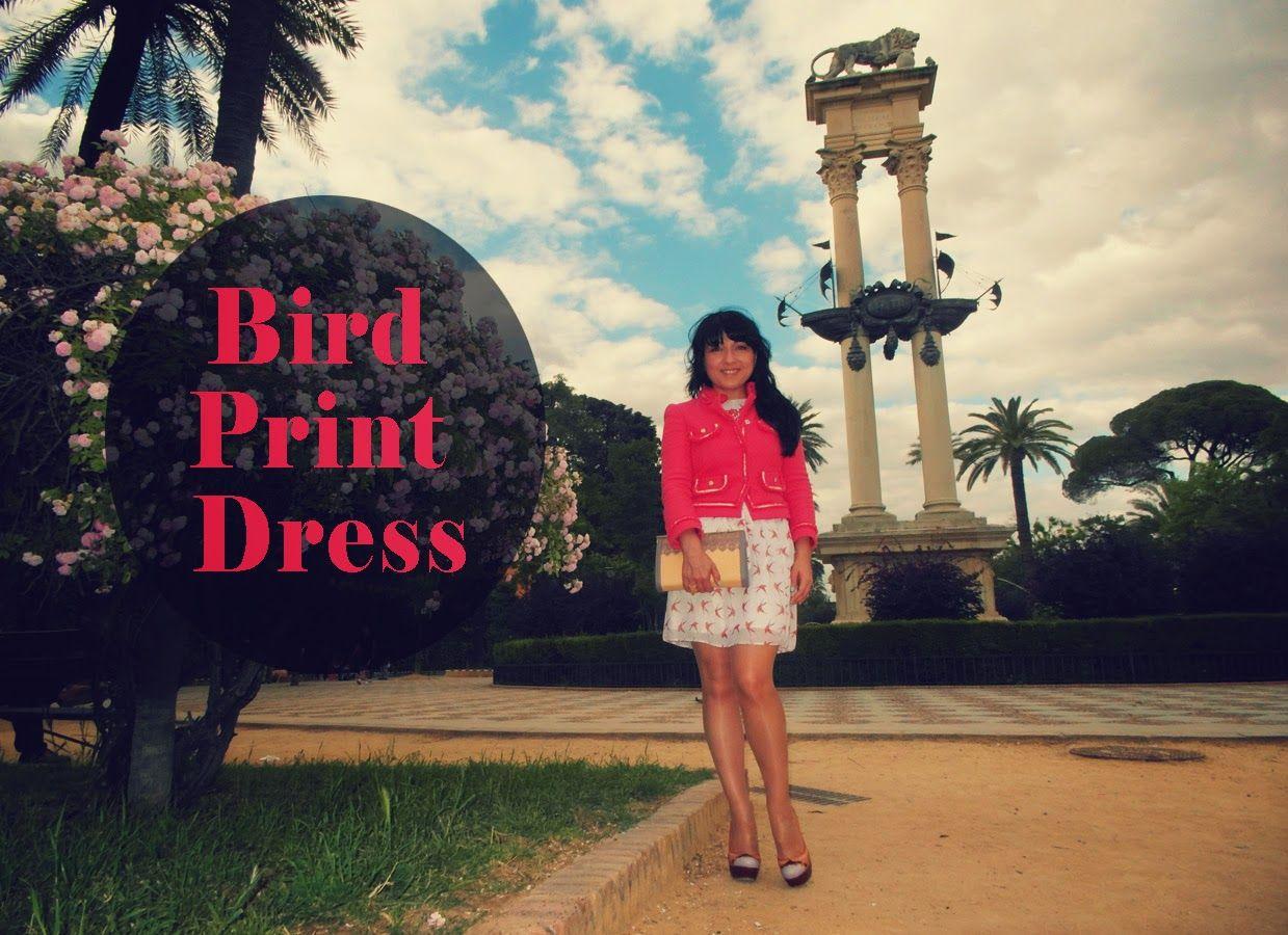 Bird Print Dress #spain #fashionblogger @cherrerany #jacket