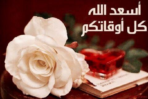 Desertrose أسعد الله جميع أوقاتكم بالخير Flowers Rose Greetings