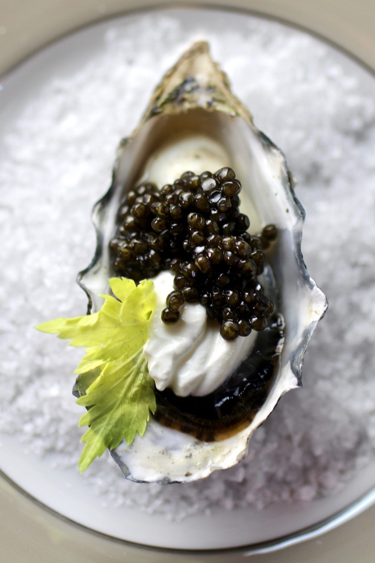 Holiday Entertaining: Oysters and Caviar in 2020 | Caviar