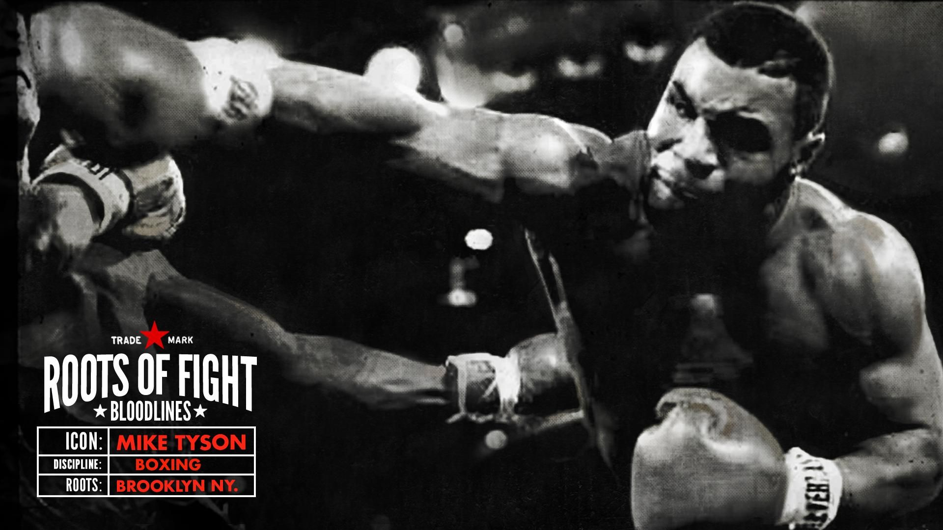 Pin On Fight Tat Images