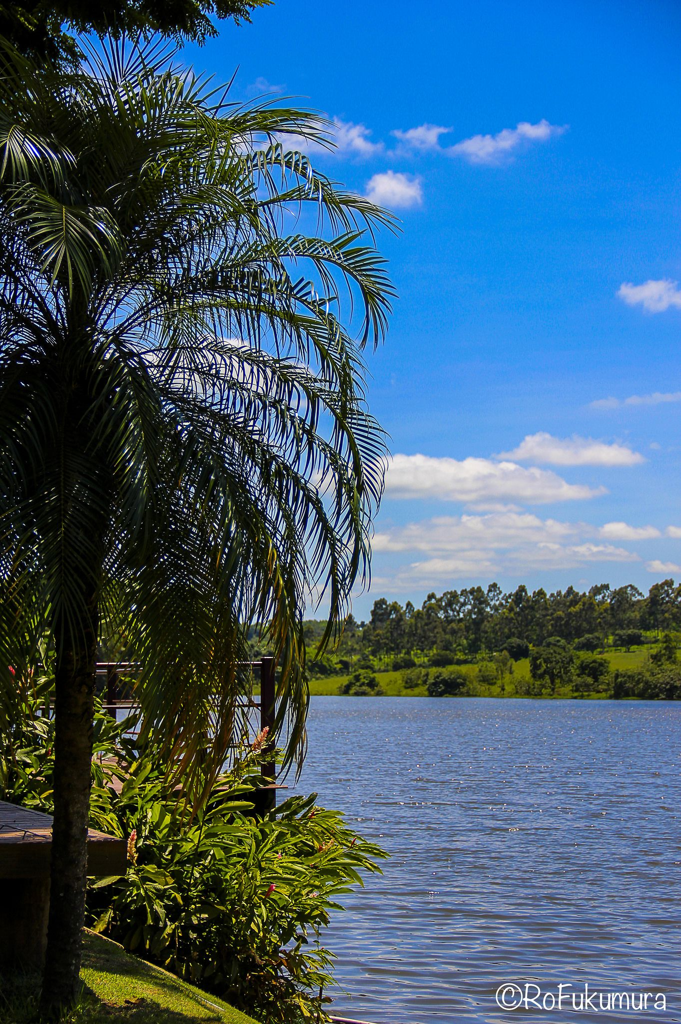 https://flic.kr/p/CUYbew | Jaguariuna-0667 | Hotel Duas Marias _ Cidade de  Holambra_SP