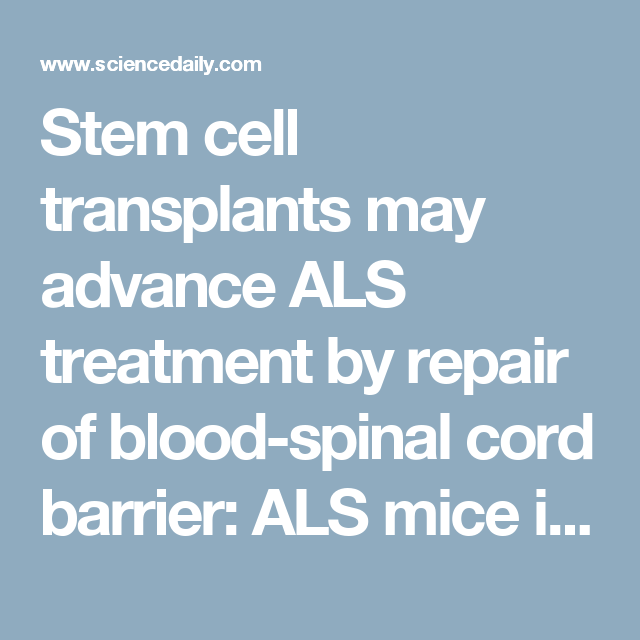 Stem cell transplants may advance ALS treatment by repair of blood