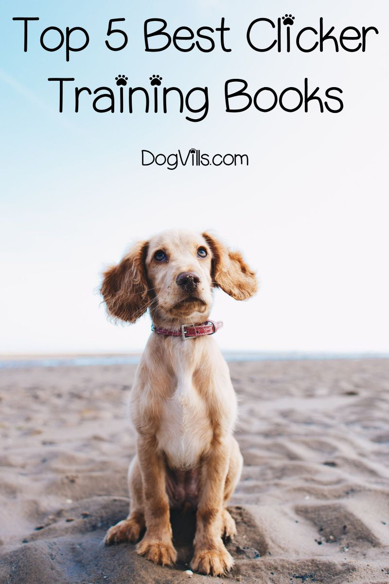 Top 5 Best Clicker Training Books For Dog Parents Tips And