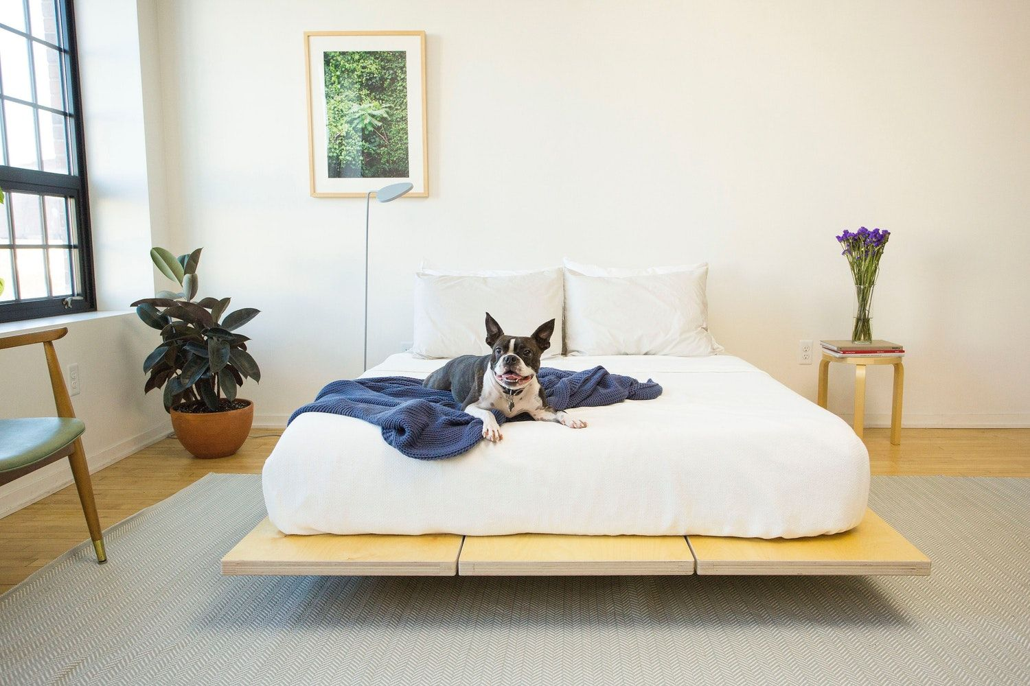 Win: The Best Bed Ever From Floyd And Tuft U0026 Needle U2014 Sponsored By Floyd