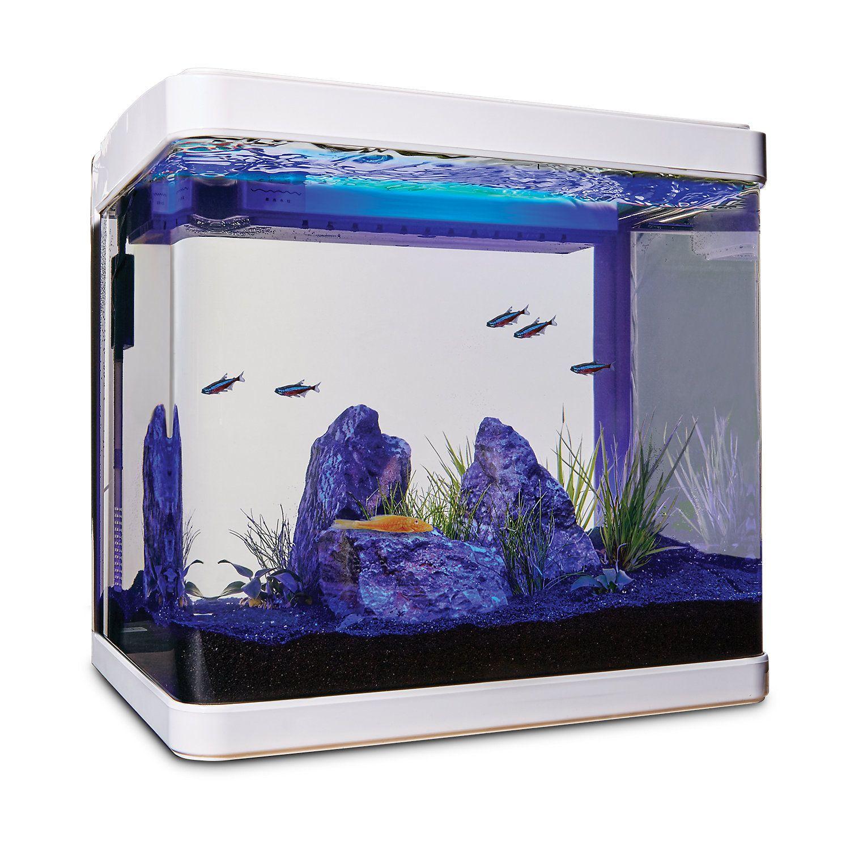 Imagitarium Freshwater Cube Aquarium Kit 5 2 Gal Aquarium Kit Betta Fish Tank Aquarium