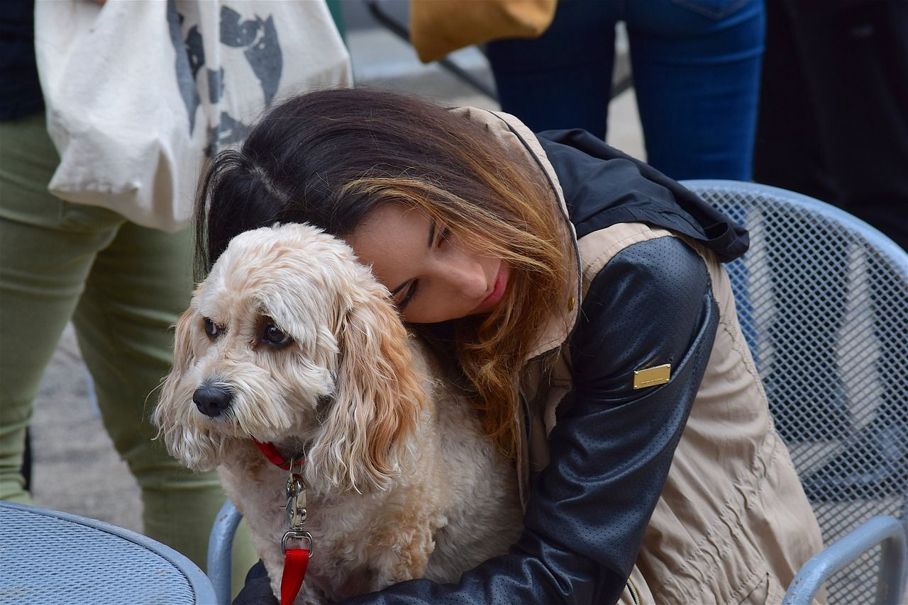 Park, Woman, Dog, Pet, Female, Happy, Animal park, woman