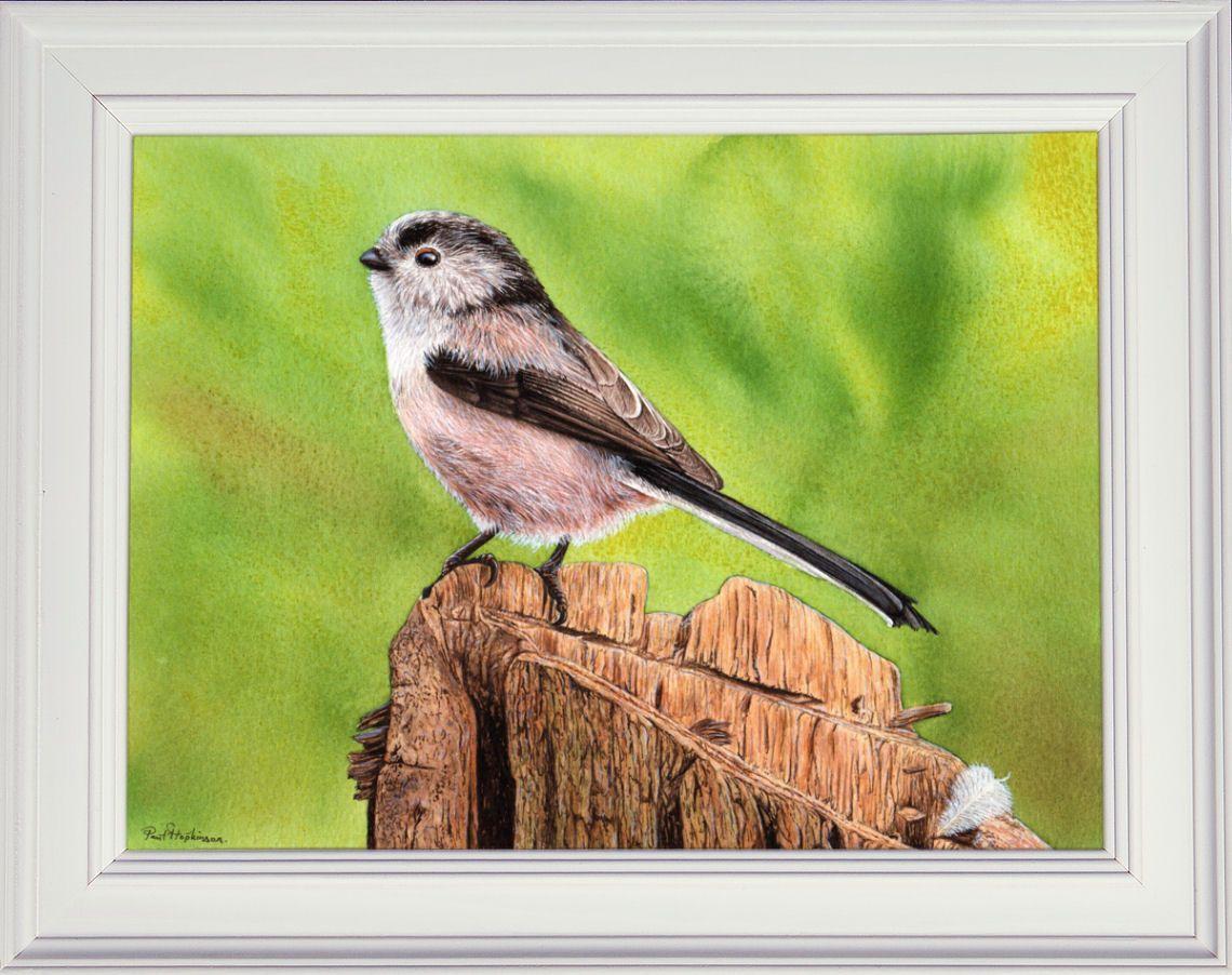 Watercolour Tutorials Digital Pdf Downloads In 2020 Bird Artists
