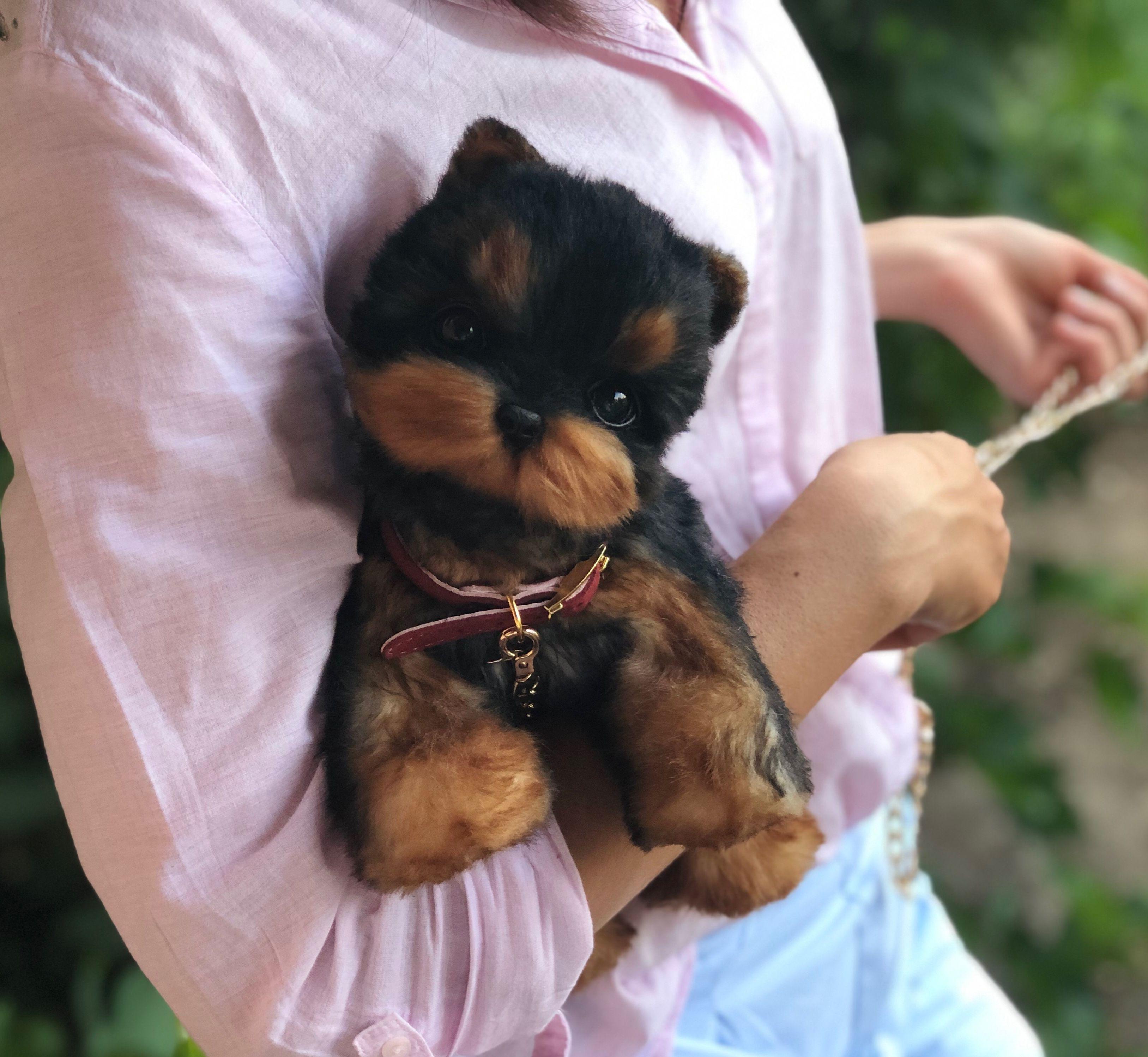 Yorkshire Terrier Realistic Stuffed Dog Realistic Stuffed Etsy Realistic Stuffed Dog Realistic Stuffed Animals Teddy Dog [ 2996 x 3254 Pixel ]