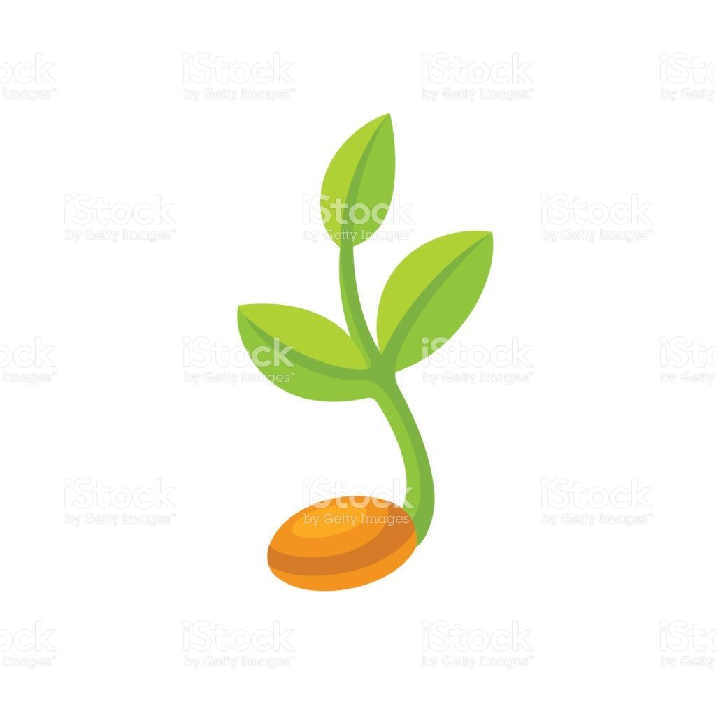 Sprouting Seed Illustration Royalty Free Stock Vector Art