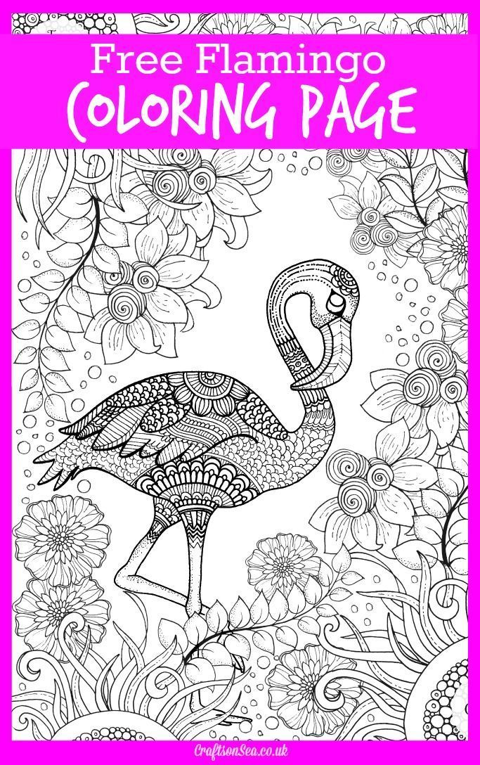 Free Detailed Flamingo Coloring Page For Adults And Kids Relax Create A Beautifully Coloured Animal Picture With This Printable