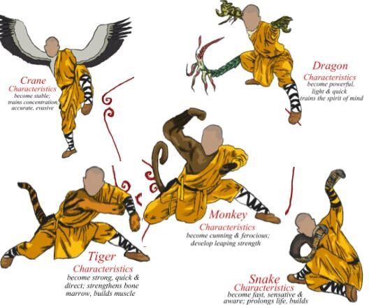 Pin By Natalie Foster On Kung Fu
