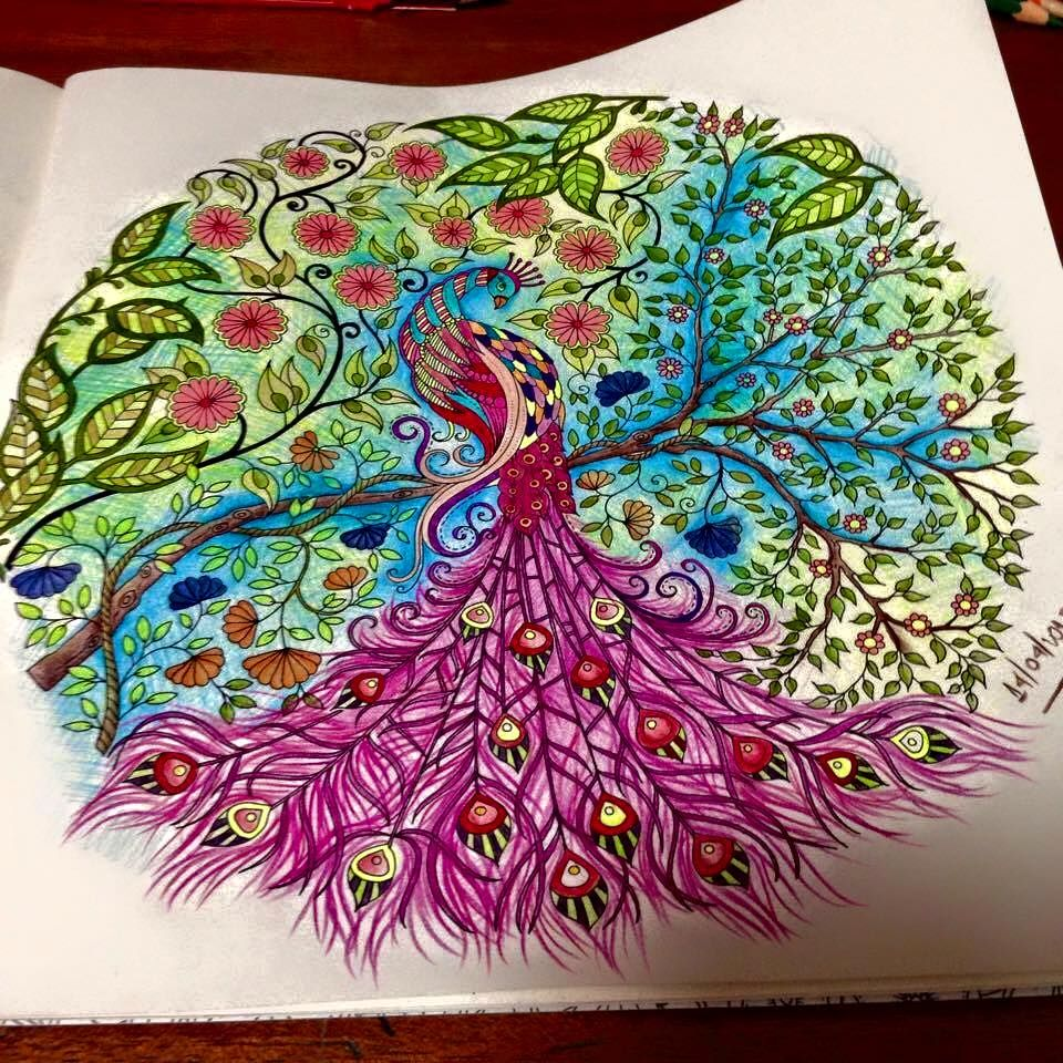 Peacock Secret Garden Pavao Jardim Secreto Johanna Basford Coloring BookAdult