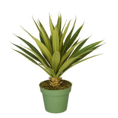 house of silk flowers artificial spike yucca plant size large in large pot
