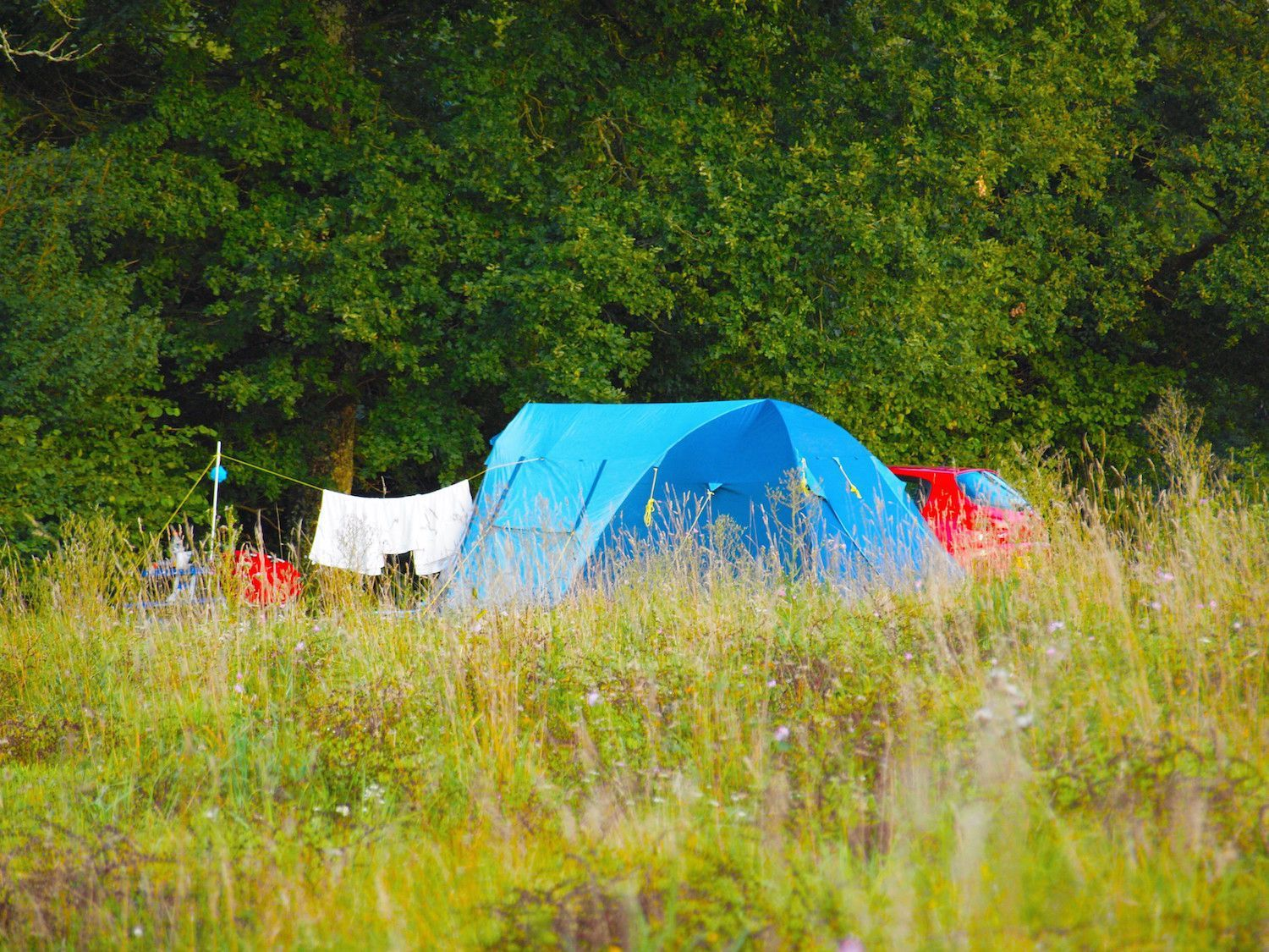 Campsites Near Me | Campsite, Camping world, Camping park