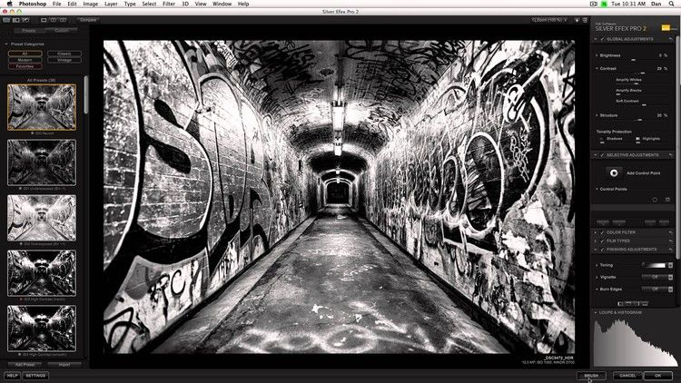 Nik collection suite silver efex pro ii best udemy coupons coursecheap com
