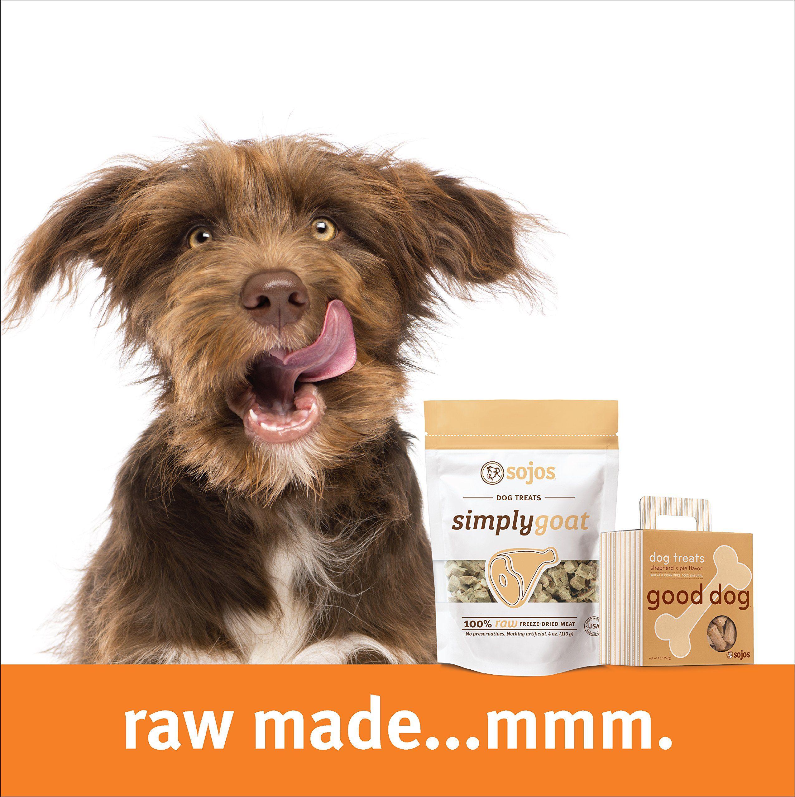 N bone puppy teething ring pumpkin flavor