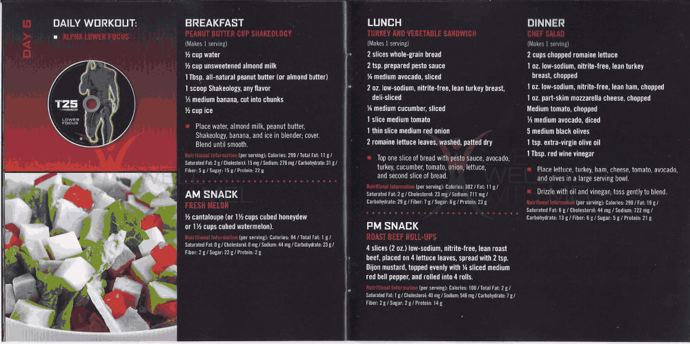 Focus T25 Fast Track 5 Day Meal.pdf T25 meal plan, T25