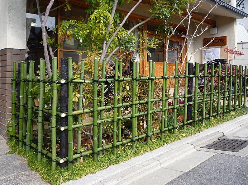 diy bamboo fence quinta Pinterest Bamboo fence Gardens and
