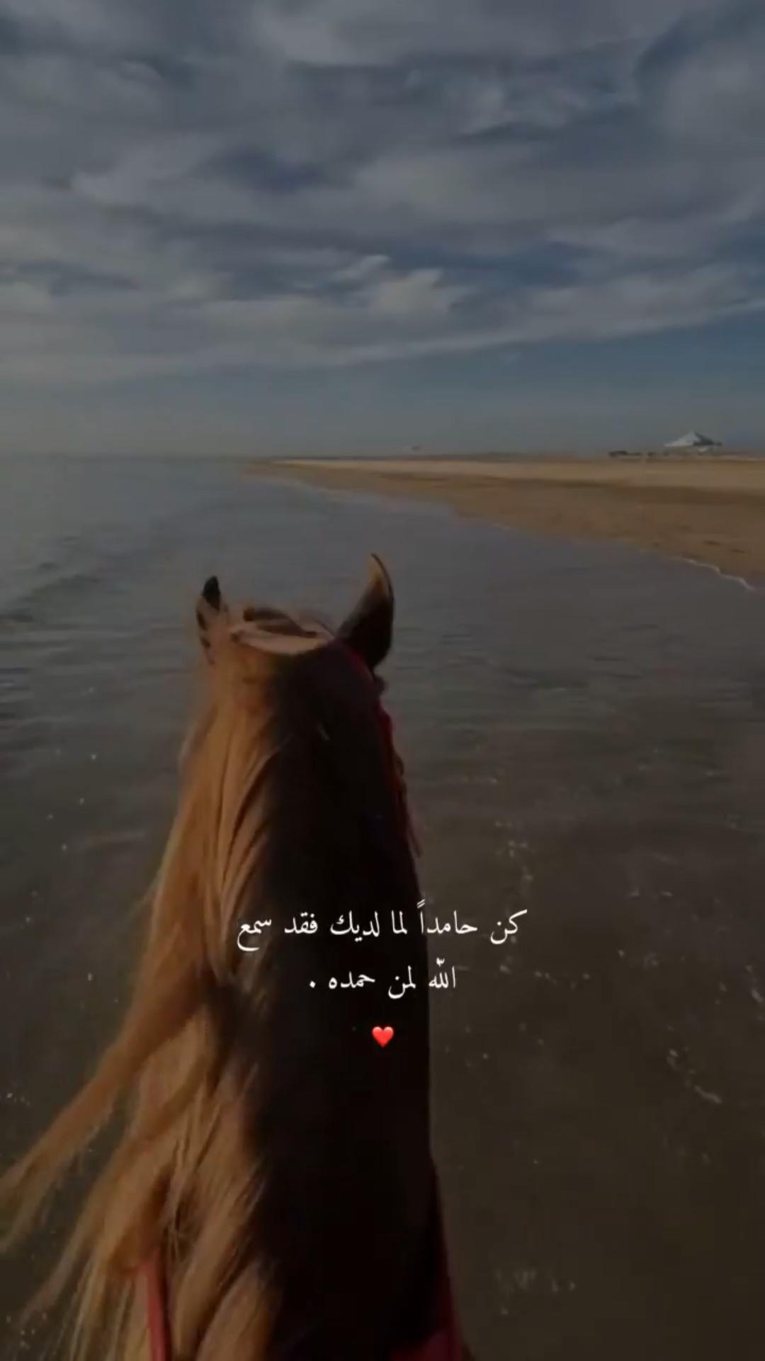 قرآن   𝓠𝓾𝓻𝓪𝓷  دع أصابعك تشهد لك وأكتب ماتؤجر عليه 💬