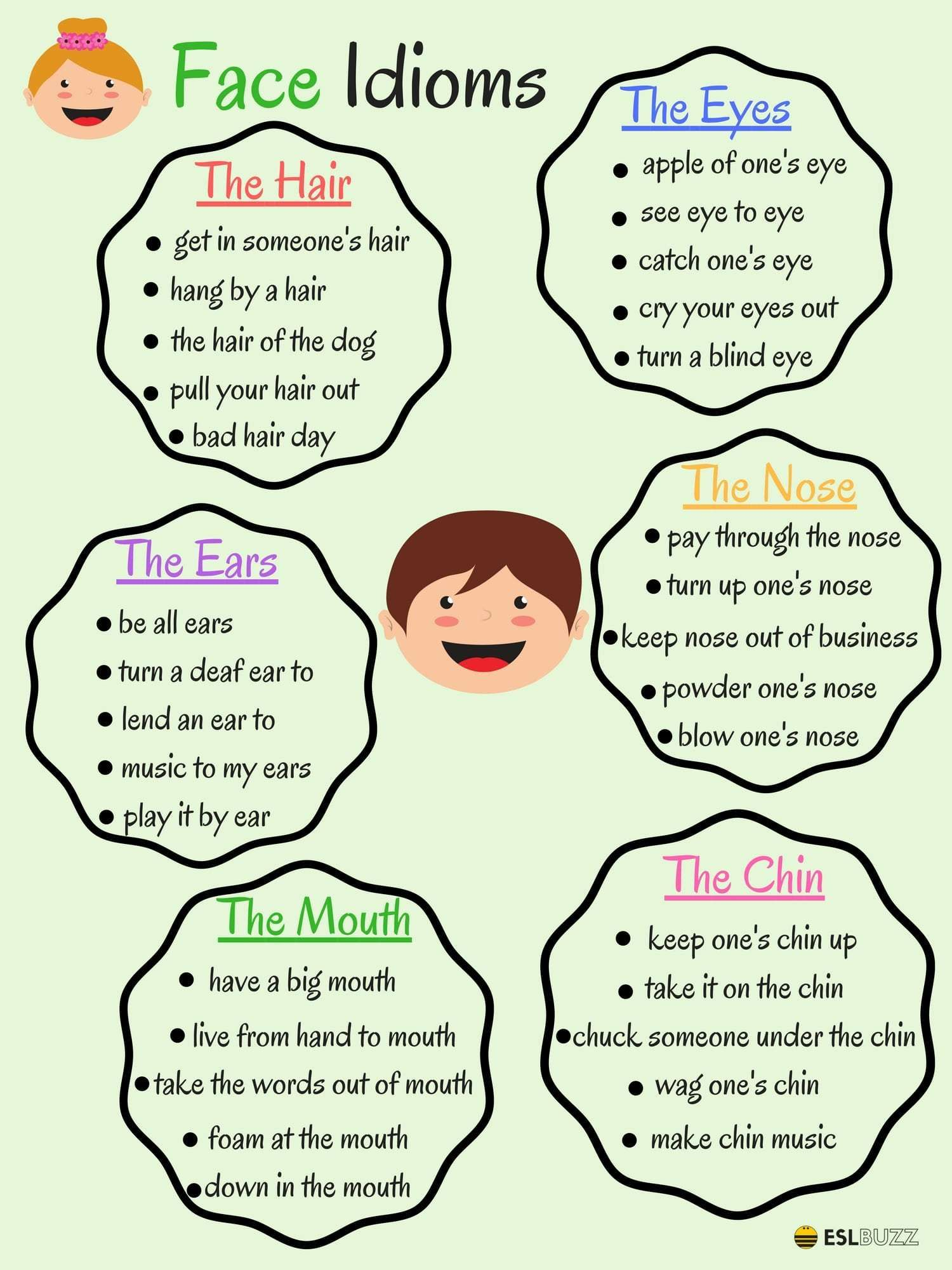 The Face Idioms 2 2