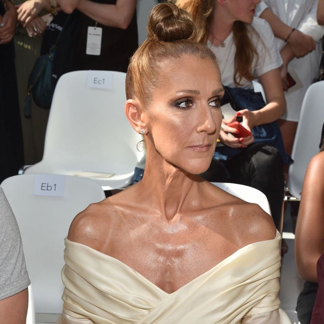 Pin by Brian Prince on Music CELINE DION | Fashion, Celine