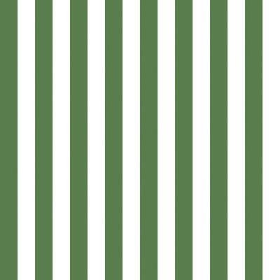 Marimekko Volume 4 Nimikko 33 X 21 Stripe Wallpaper Color Kelly Green White