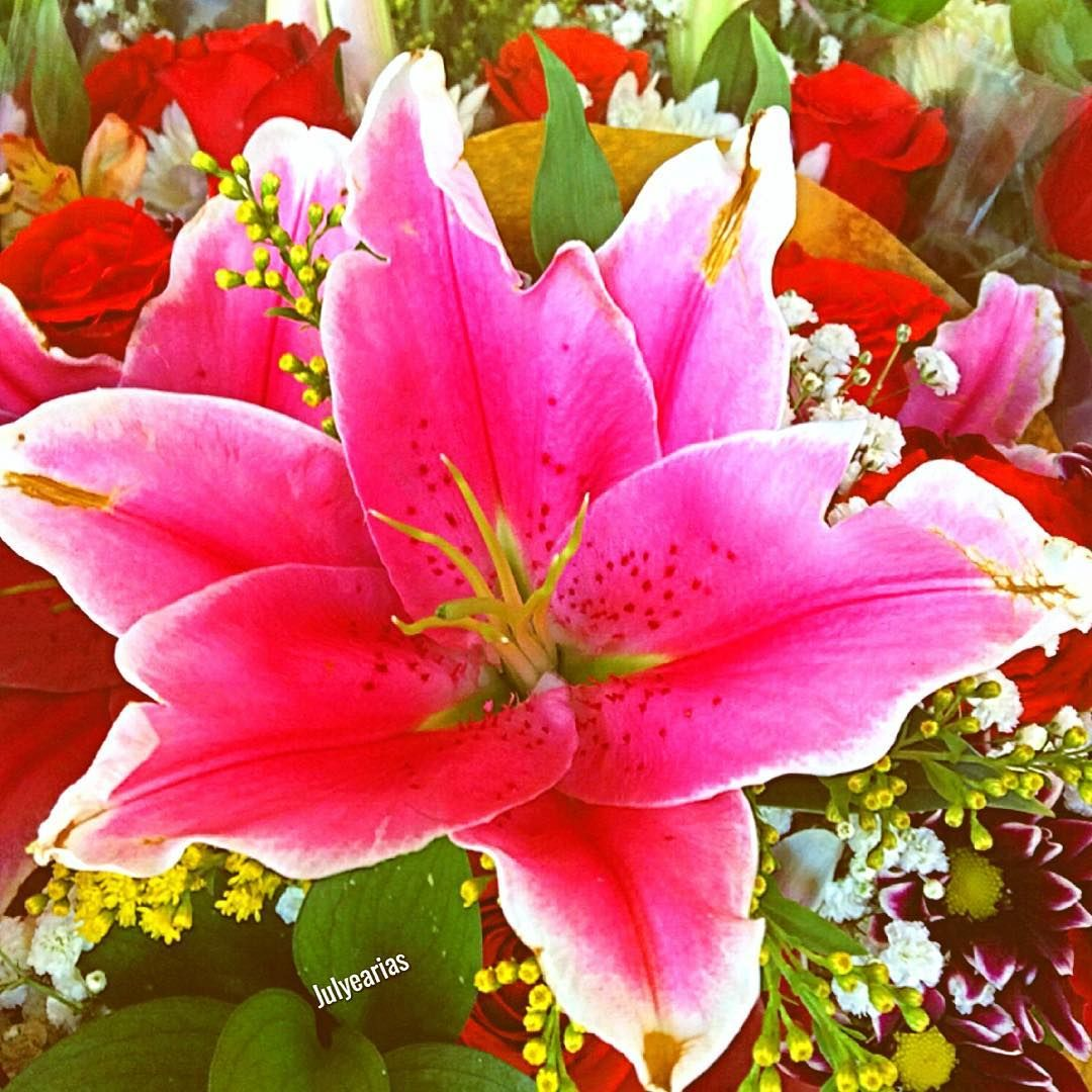 Good morning #igers #friends #thankyou #flores #flowers ...