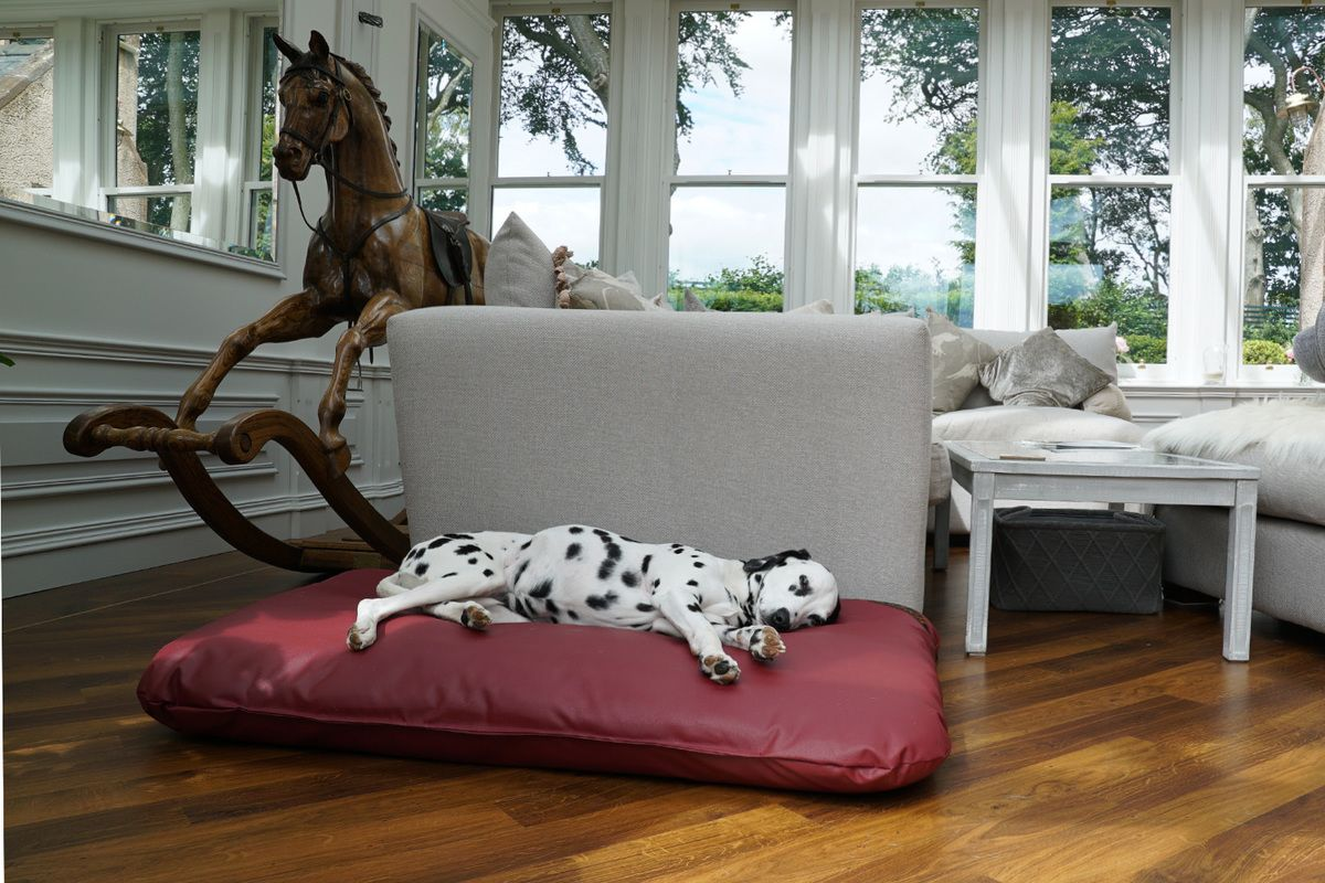 The Wipe Clean Mattress Dog Bed Dog Mattress beds and