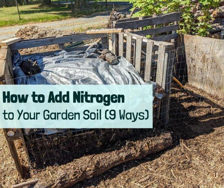 How to add nitrogen to your garden soil 9 ways in 2020