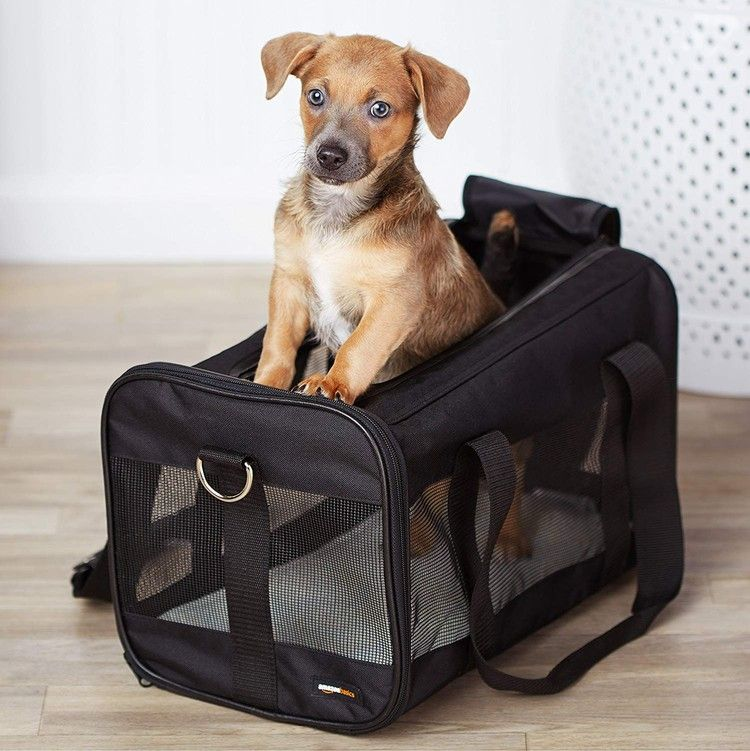 Pawfect Pets Airline Approved Pet Carrier Pet Travel Carrier Pet Carriers Dog Carrier