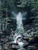 Glowing fairies - Bing Images
