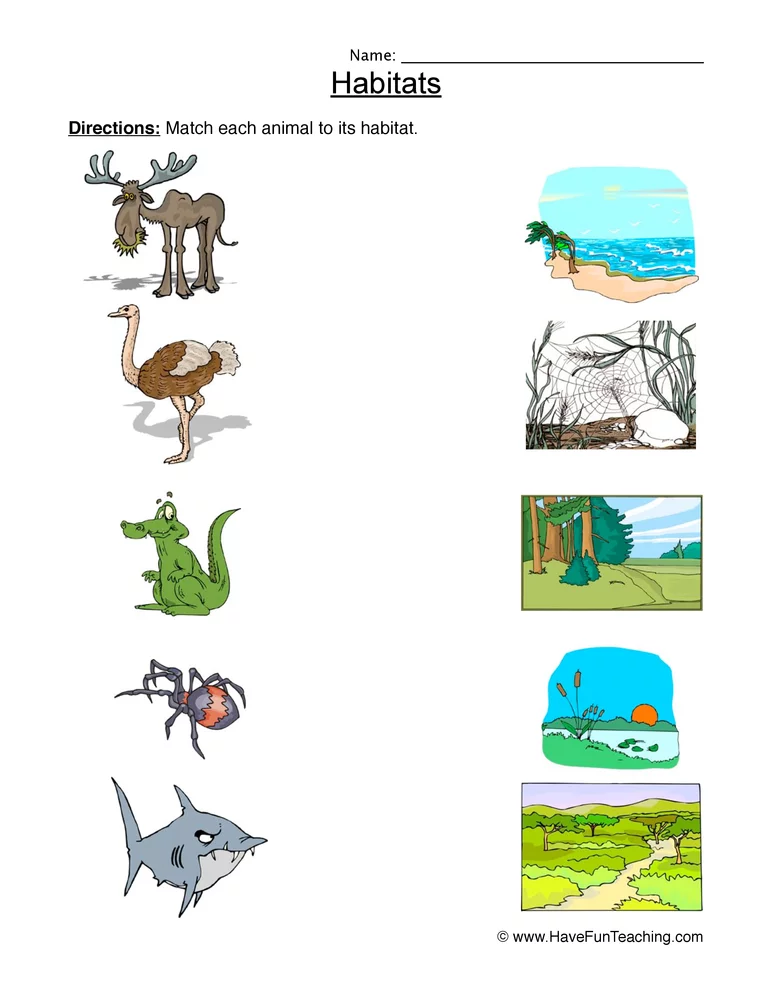 Matching Animal Habitats Worksheet Animal Habitats Habitats Habitat Activities