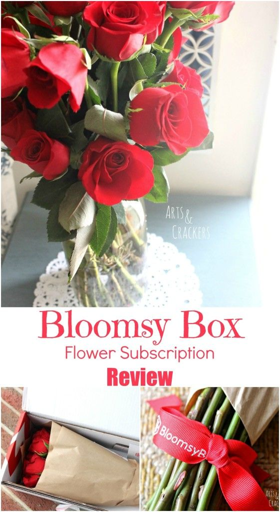 bloomsy
