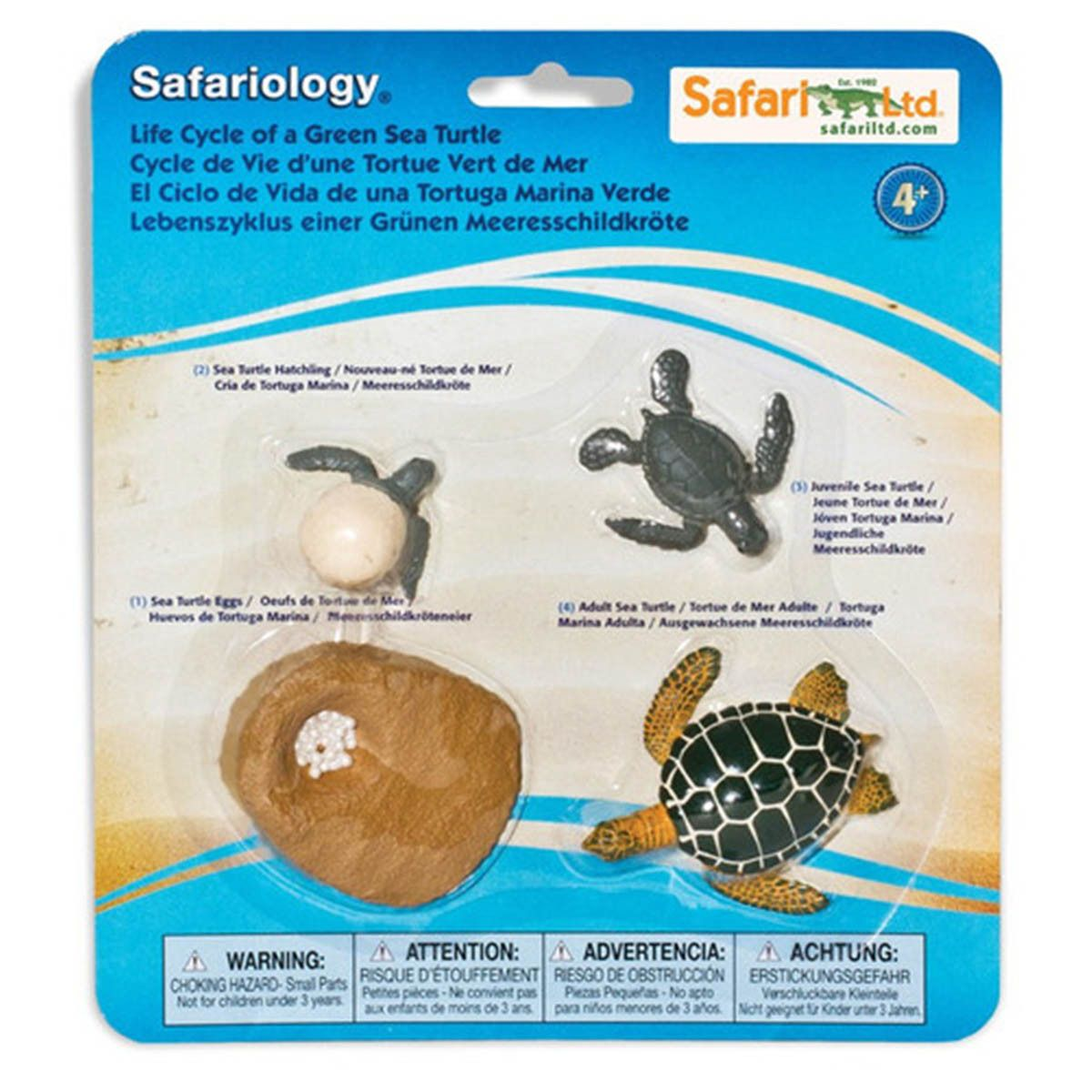 This Is A Life Cycle Of A Green Sea Turtle Animal Figures Set Produced By Safari These Life
