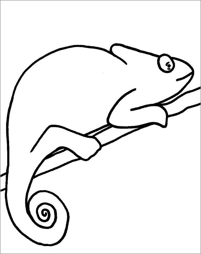 Chameleon Coloring Page Coloring Pages Chameleon Coloring Pages To