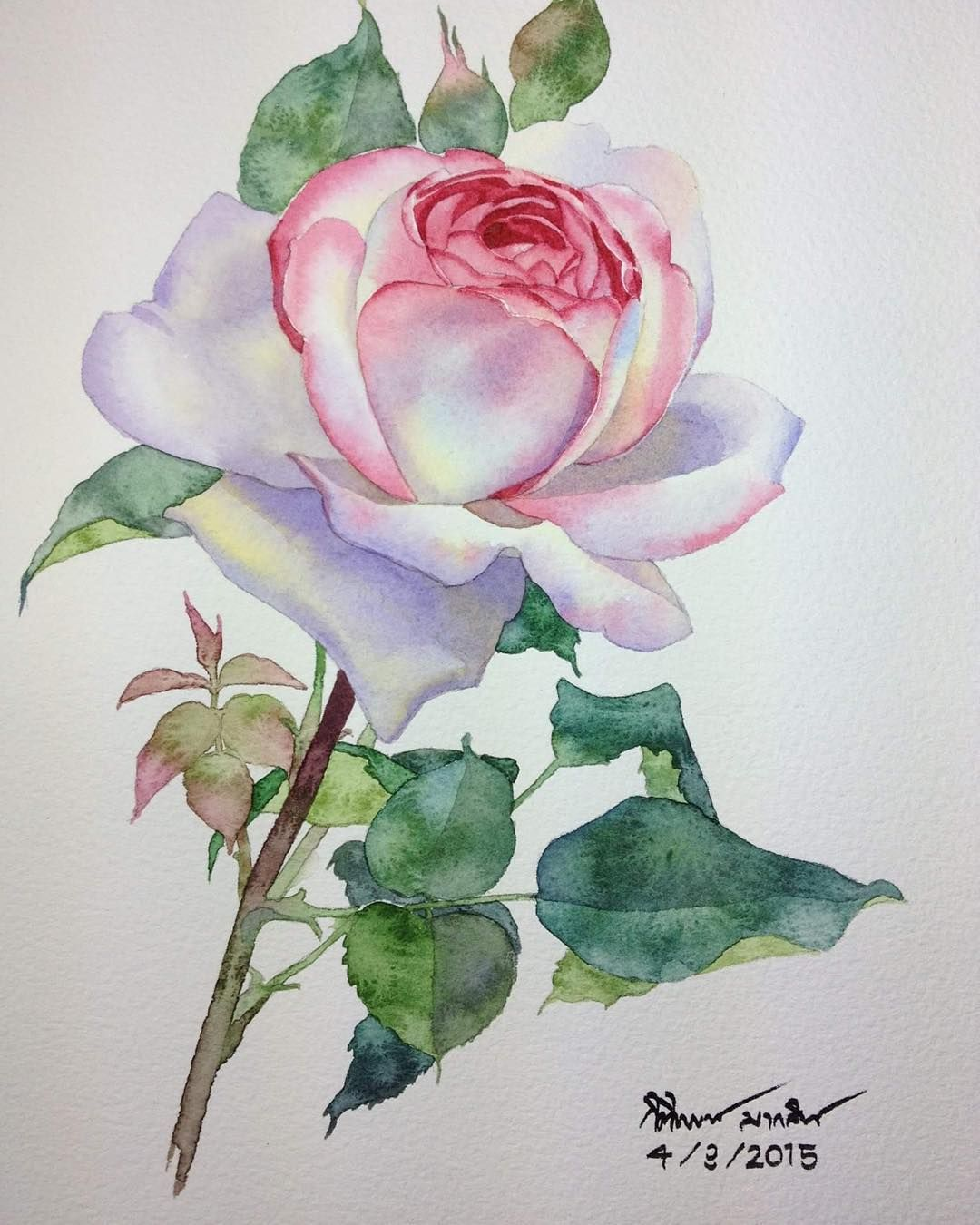 #valentines #aquarelle #aquarius #art #artist #paint #painting #watercolor #watercolorpainting #flower#waterblog