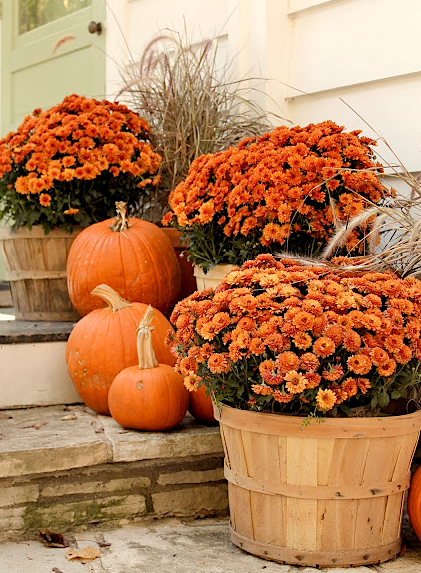 fall porch decor ideas pumpkins and potted mums porches rh pinterest com