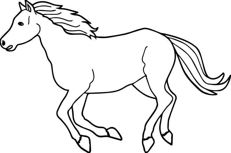 Running Arabian Horse Coloring Page Dengan Gambar