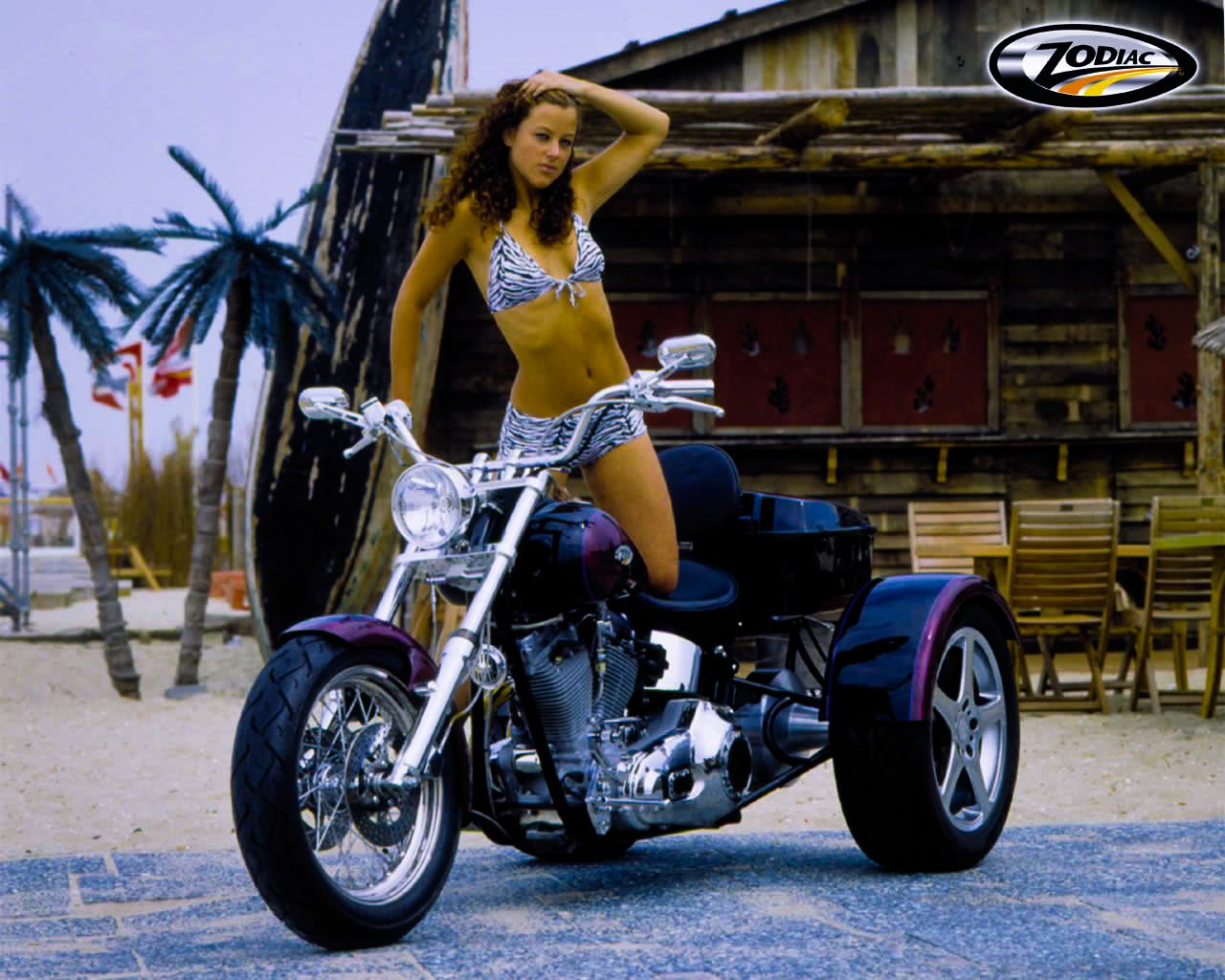 bikinis-harley-davidson-motorcycles-wallpaper-young-teen-video-gallery