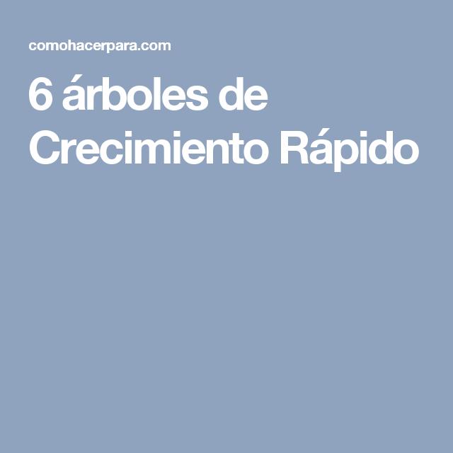 6 rboles de crecimiento r pido jard n rboles de for Arboles perennes de crecimiento rapido