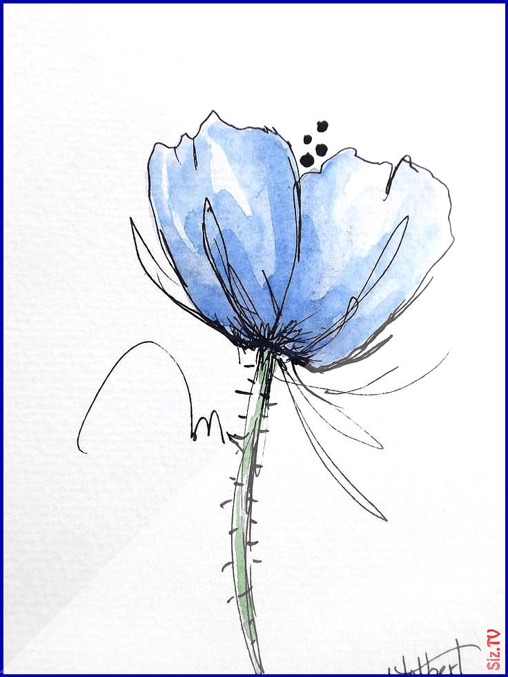 Blaue Mohnblume Urspr Nglicher Aquarellkunst Malereistift Und Etsy Aquarellkunst Blaue Malereist Original Watercolor Art Watercolor Art Paintings Colorful Art