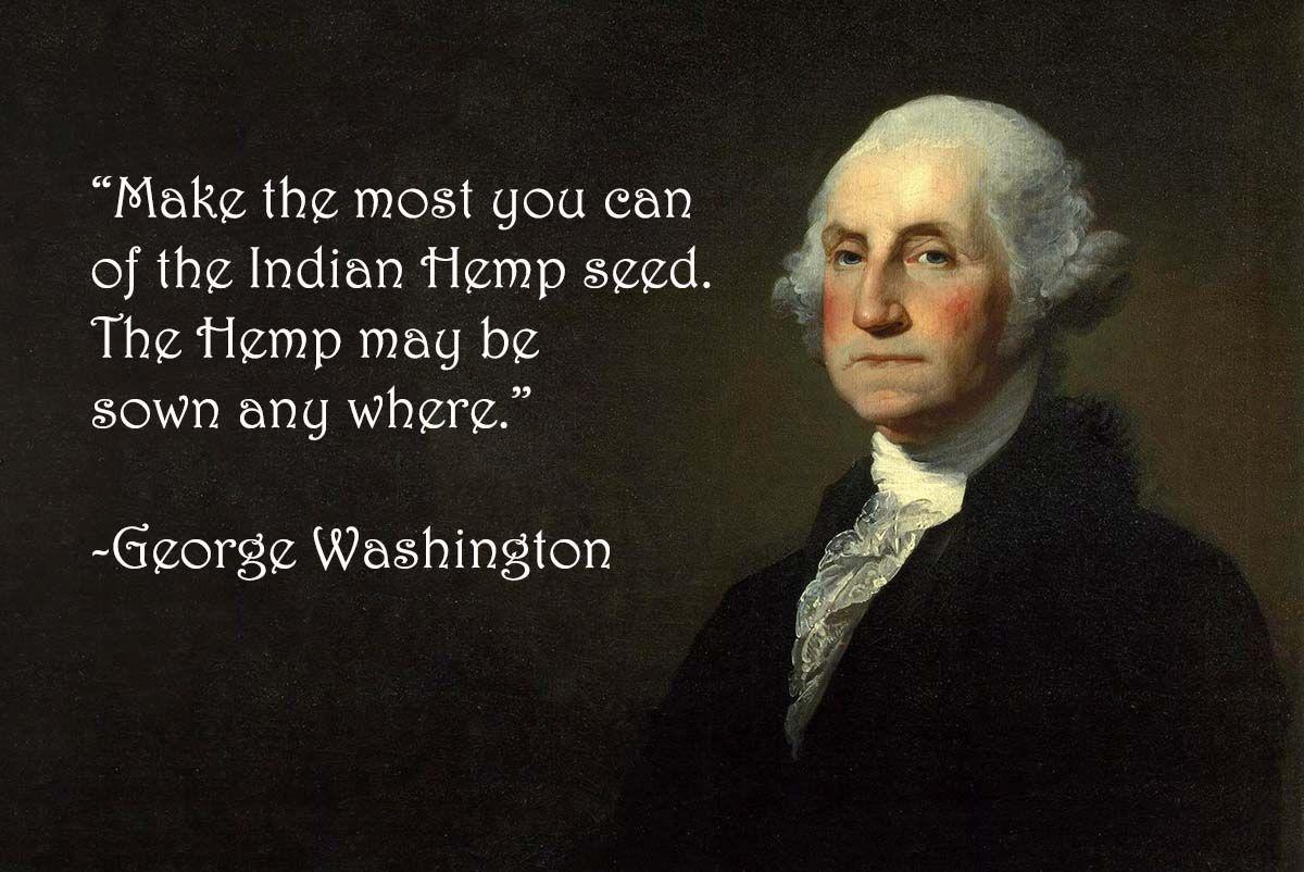 George Washington Hemp George Washington Quotes Historical Quotes Medical Herbs