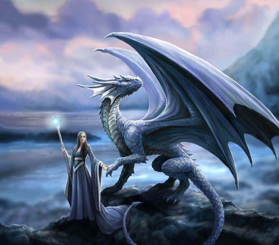 Wizard and dragon