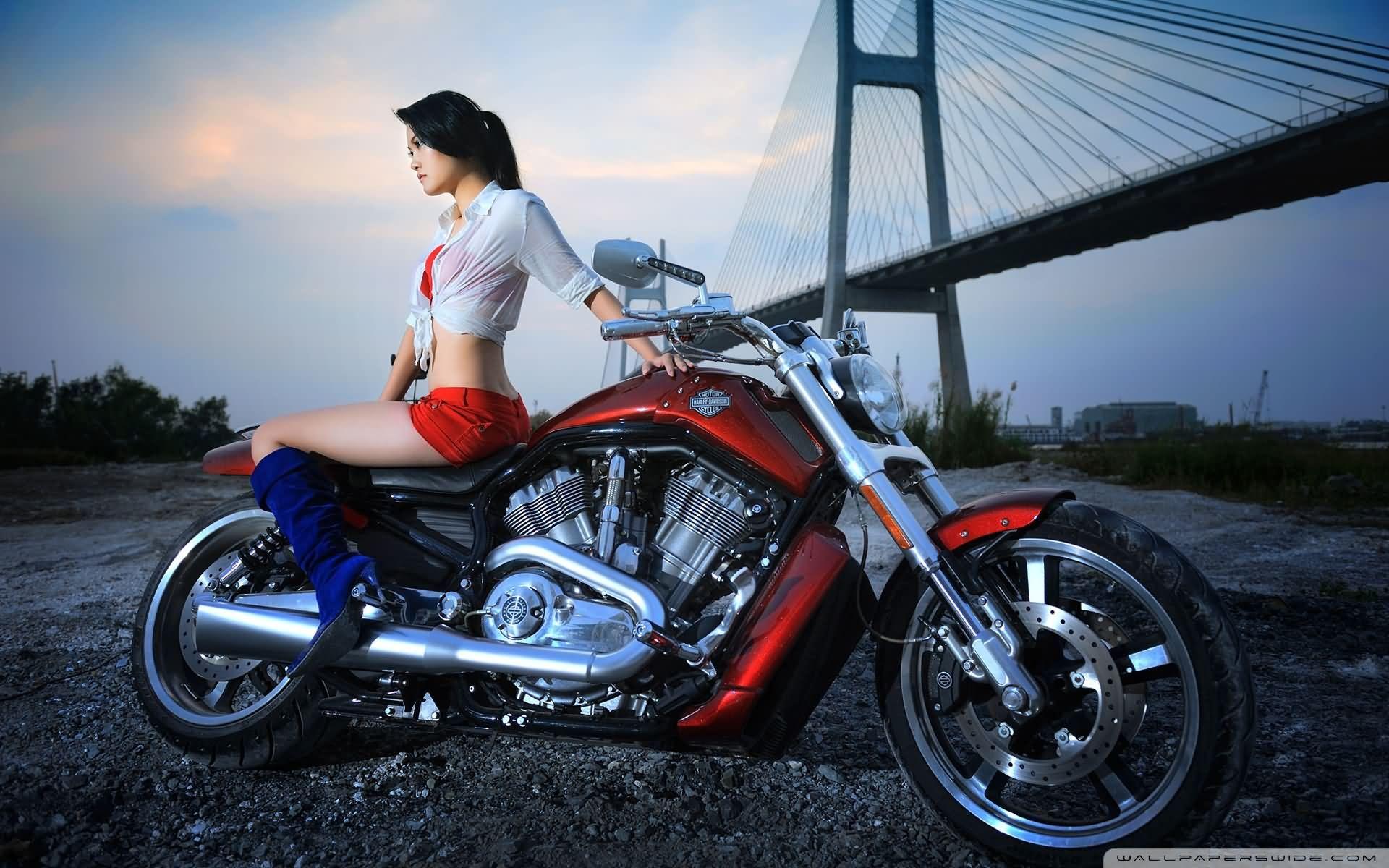 Stylish Girl With Harley Davidson Bike Image Harley Davidson