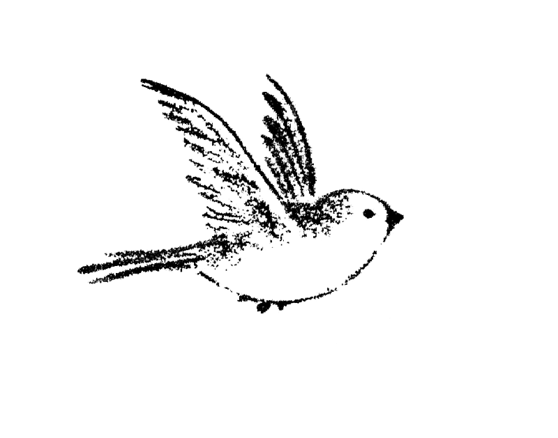 Small Black Ink Flying Sparrow Tattoo Design Flying Bird Tattoo Little Bird Tattoos Bird Drawings