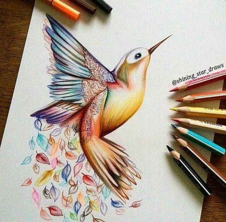 Pin De Marisa Morales En Colibries Colibri Dibujo Arte De